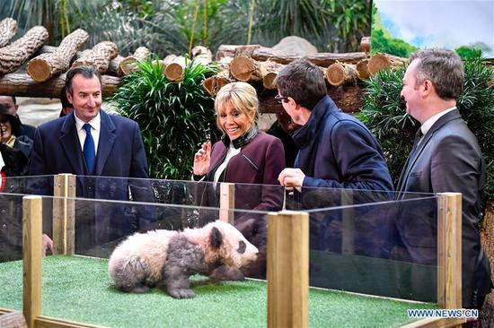 Brigitte Macron (2nd L), wife of French President Emmanuel Macron, looks at a panda baby before a naming ceremony in Saint-Aignan, France, on Dec. 4, 2017. Brigitte Macron, wife of French President Emmanuel Macron, revealed the name of the panda baby, the first-ever cub born in the country, at a naming ceremony at a zoo in central France on Monday. Joined by Chinese officials, Brigitte Macron, who is also the new panda's godmother, announced that the four-month-old cub's name was Yuan Meng. (Xinhua/Chen Yichen)