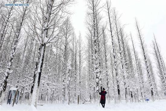 A tourist visits the snow-covered Longhu Park in Huainan City, east China's Anhui province, Jan. 5, 2018, on the occasion of