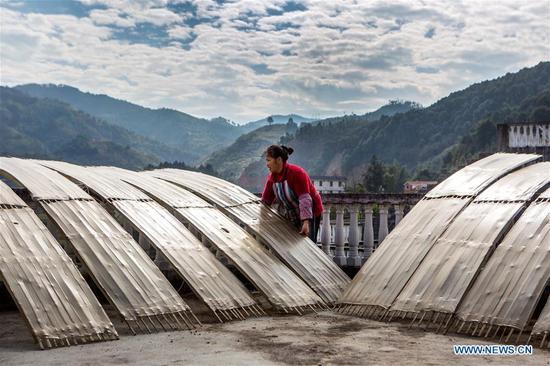 A farmer airs the sheet jelly made from sweet potato starch at Pingya Village of Fengshan County, Hechi City, south China's Guangxi Zhuang Autonomous Region, Jan. 10, 2018. (Xinhua/Zhou Enge)