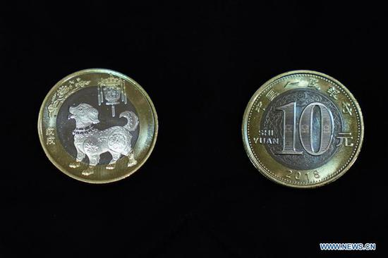 Photo taken on Feb. 2, 2018 shows commemorative coins for the Year of the Dog in Beijing, capital of China. The People's Bank of China issued commemorative 10-yuan coins on Friday. (Xinhua/Zhang Yuwei)