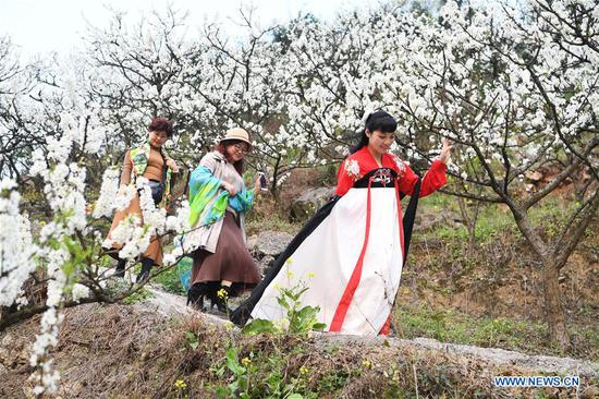 Tourists walk under plum blossoms at Shangmatai Village of Chengjiang Township, southwest China's Chongqing Municipality, March 11, 2018. (Xinhua/Wang Quanchao)