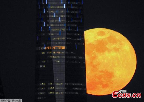 A supermoon rises next to a skyscraper in Madrid, Spain, Jan. 31, 2018. Stargazers across large swathes of the globe had the chance to witness a rare 'super blue blood moon' Wednesday, when Earth's shadow bathed our satellite in a coppery hue.(Photo/Agencies)