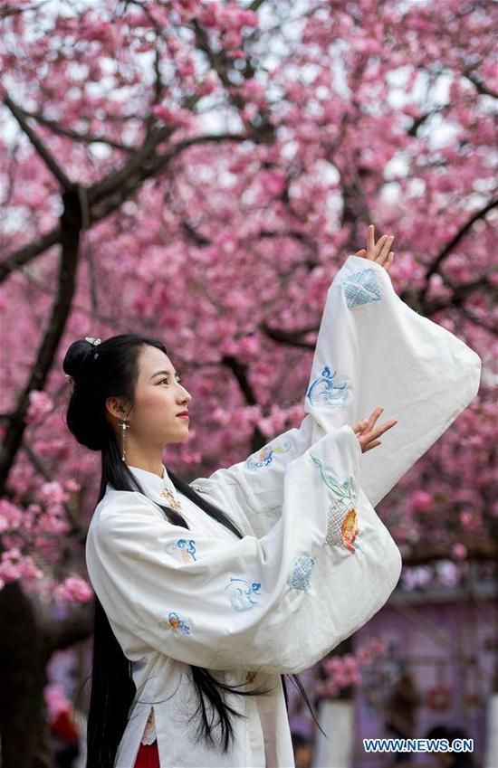 A woman in classical Chinese costume poses for photos with cherry blossoms at Yuantongshan Park in Kunming, capital of southwest China's Yunnan Province, March 6, 2018. The cultivation of cherry blossoms in Kunming can be traced back to as early as the 13th century. Nowadays, the cherry blossoms at Kunming's Yuantongshan Park are a popular spring attraction for locals and tourists alike. (Xinhua/Hu Chao)