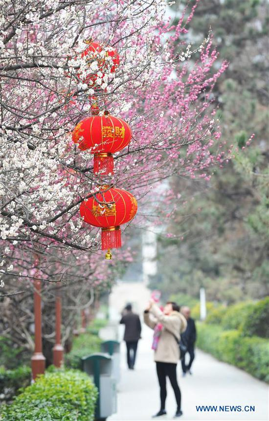 Red lanterns are seen in Jiaxiu Square of Guiyang City, southwest China's Guizhou Province, Feb. 13, 2018. Different cities around China were decorated to greet the upcoming Chinese Lunar New Year. (Xinhua/Zhao Song)