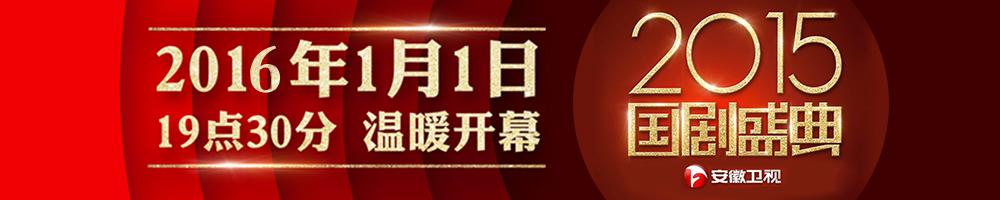 2015安徽卫视国剧盛典