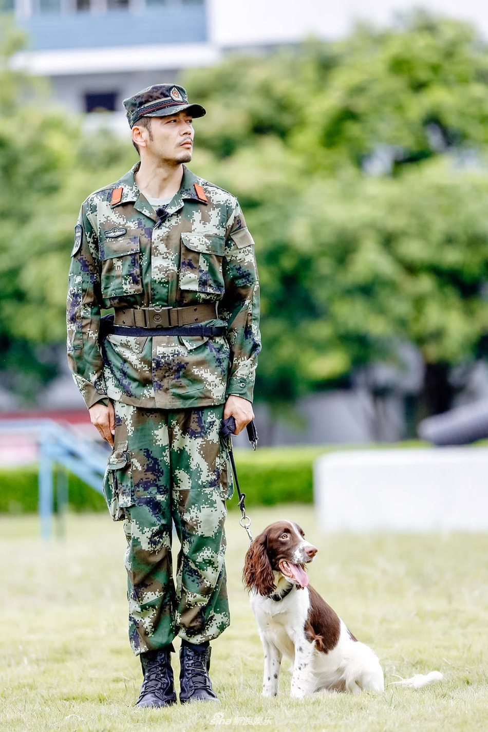 组图 训犬员上线 杨烁穿军装与警犬高能互动 实力展现军人风采