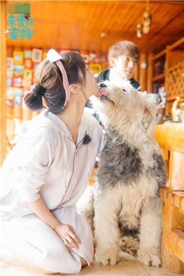 少女和狗做爱视频����_李菲儿化身发带小姐姐少女气质十足 与狗狗互动友爱