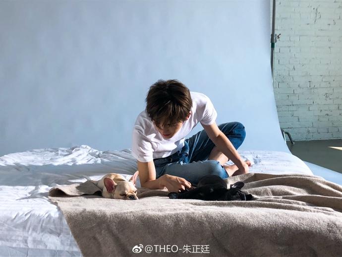 朱正廷打扮休闲与萌犬一起拍照 笑容明朗画面很有爱