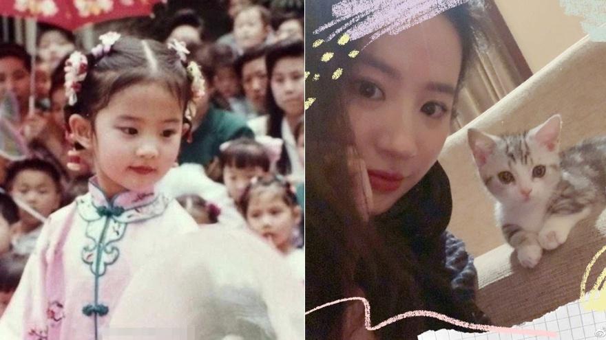 刘亦菲童年表演照曝光 穿粉色表演服眉清目秀灵气十足