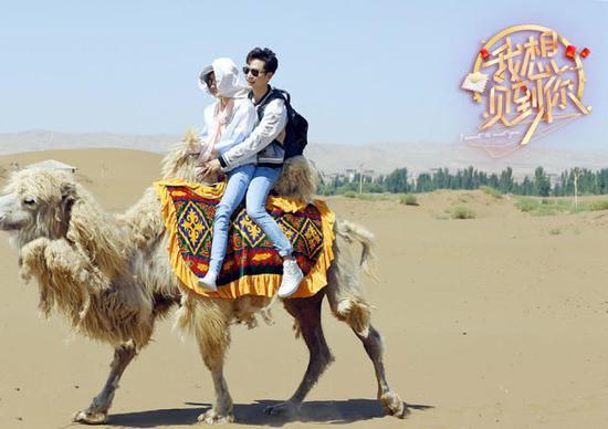 """""""安珠夫妇""""再续前缘同骑骆驼 茅子俊变智谋担当"""