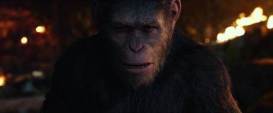 """這就是《猩3:終極之戰》。雖说是終章,但也不知道這會不會真的是""""終極之戰"""",尤其是最后票房上這場""""戰爭""""大獲全勝的話。"""