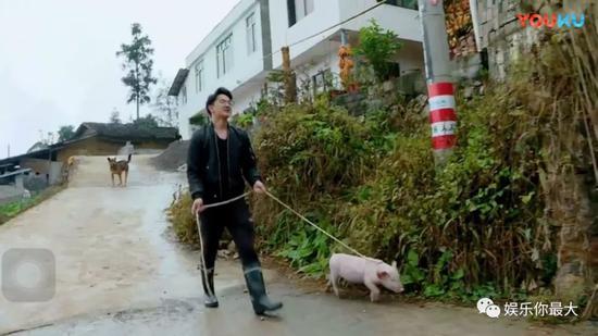纨绔富二代×高级CFO正确打开方式竟是卖猪父子?