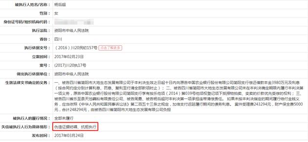 中国执行信息公开网信息