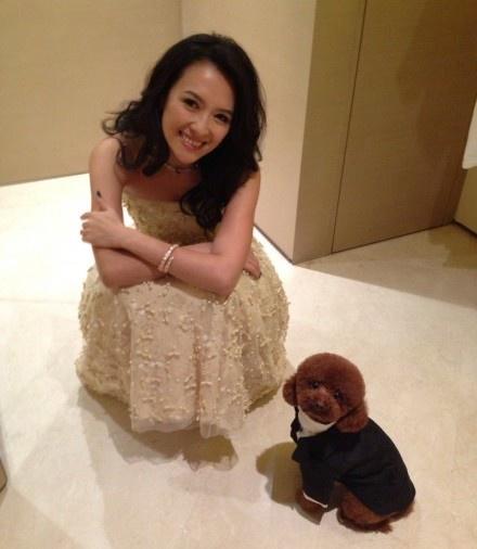 章子怡与爱犬