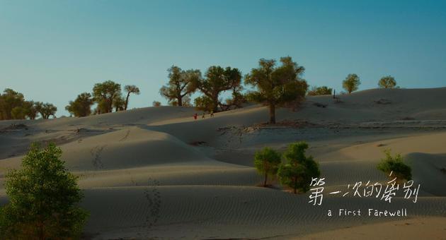艾萨和幼友人在胡杨林中游玩