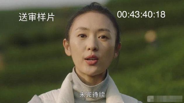 《三十而已》送审样片泄露 制作方柠萌影业已报警