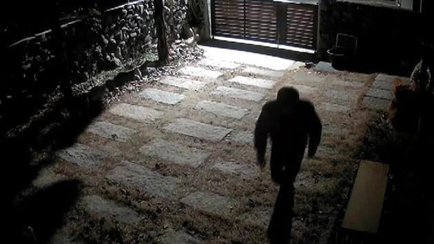 具荷拉家中被盗案宣布结案 警方调查一年未抓到人
