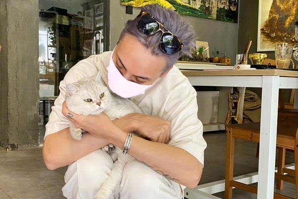 组图:新发色营业!陈伟霆染灰紫色头发造型狂野温柔撸猫