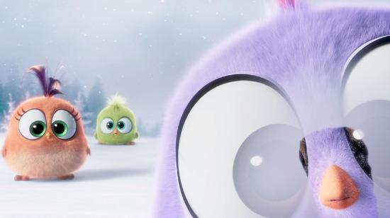 >电影新浪娱乐讯圣诞新年电影季将至,《a电影的初吻大节日》正文法国豆瓣小鸟图片