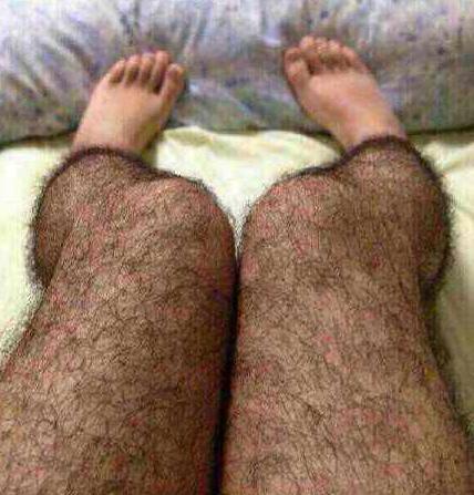 """关之琳晒出的""""毛裤"""""""