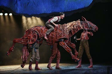 《战马》进军央视春晚 Joey造价360万元