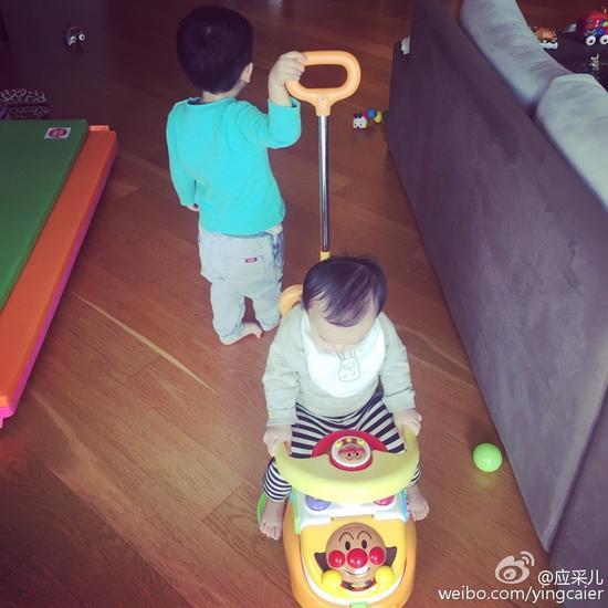陈小春儿子与谢天华儿子