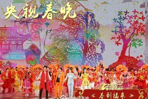 央视春晚观众调查:赵薇杨洋节目好评集中