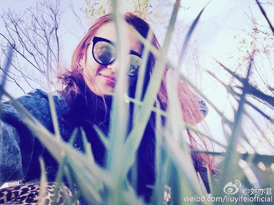 刘亦菲晒美照