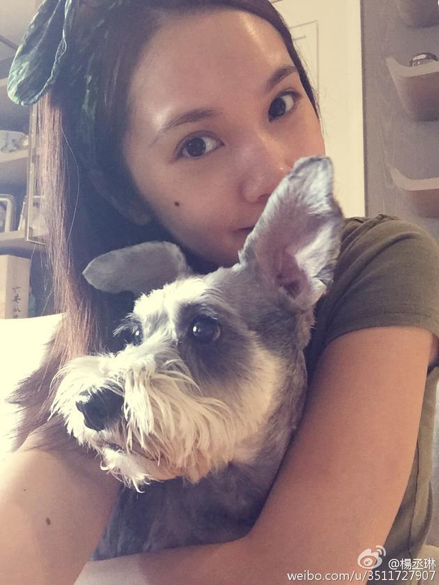 杨丞琳与狗狗