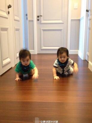 林志颖晒出双胞胎儿子的近照
