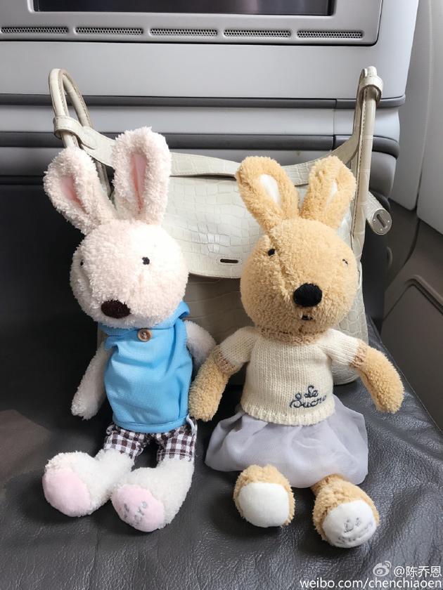 穿白衣的米色兔子和穿蓝衣的粉色兔子