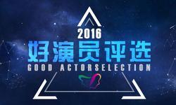 2016年中国电视好演员评选