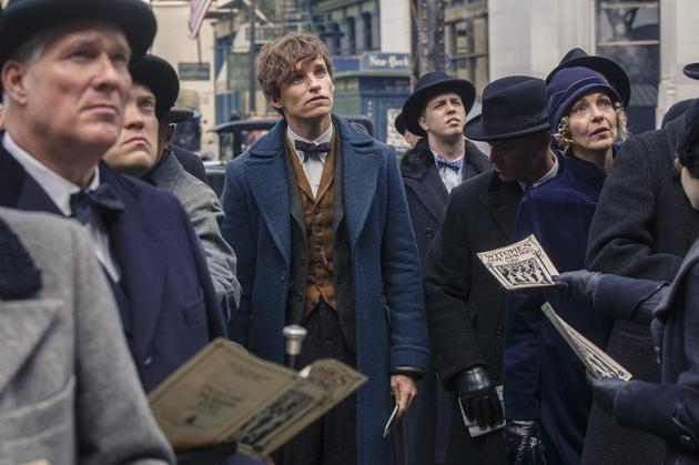 纽特的孔雀蓝大衣