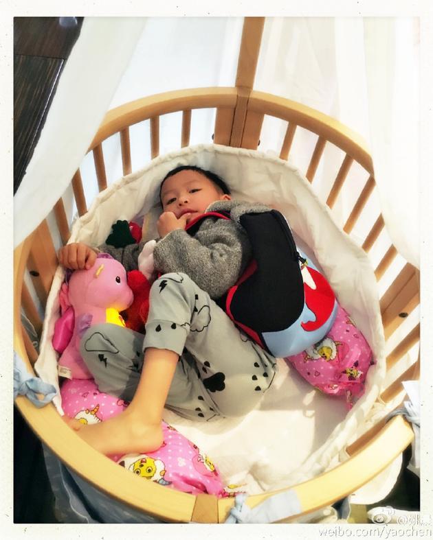 姚晨儿子小土豆睡妹妹的婴儿床