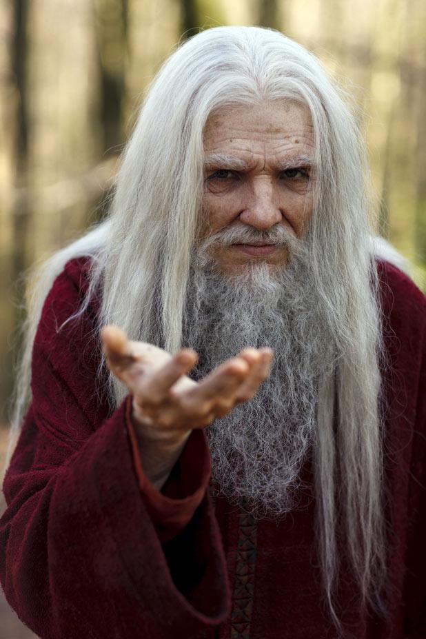 借《梅林》的老年梅林图一用