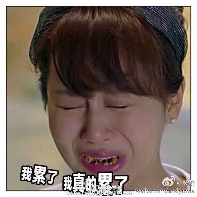 杨紫和王庆祥斗图