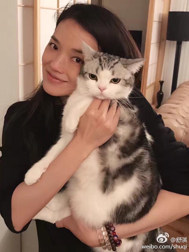 舒淇和爱猫