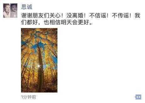 陈思诚否认离婚