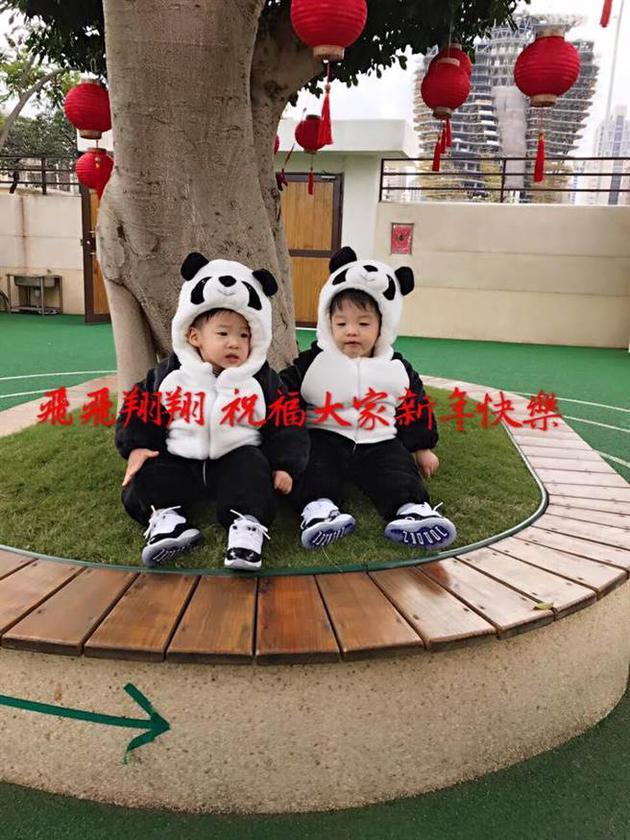 范玮琪双胞胎儿子