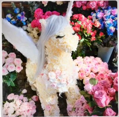 李晨视频中晒出鲜花做成的小马驹