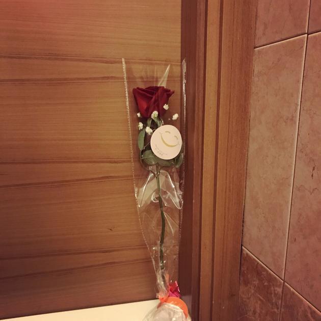 何超莲送玫瑰