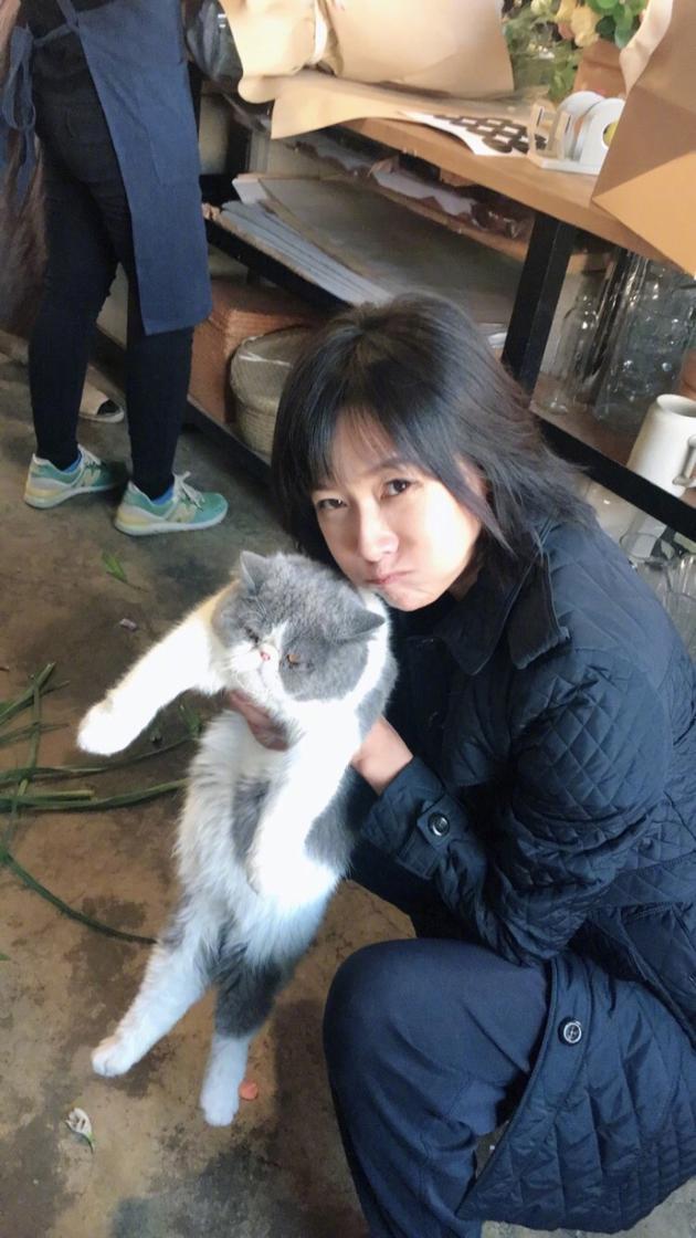 徐静蕾抱猫合影