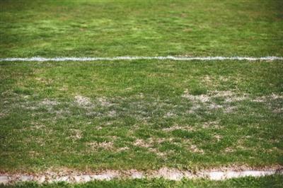 国足在伊朗训练场地质量差