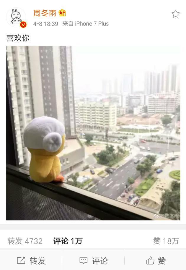 周冬雨表白小黄鸭