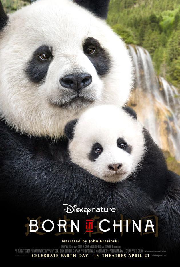 《我们诞生在中国》北美票房名列前茅