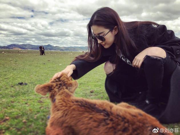 """刘亦菲自称""""小牛犊和傻大姐"""""""