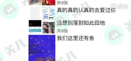 和好?炒作?刘洲成林苗疑似同逛水族馆(图)