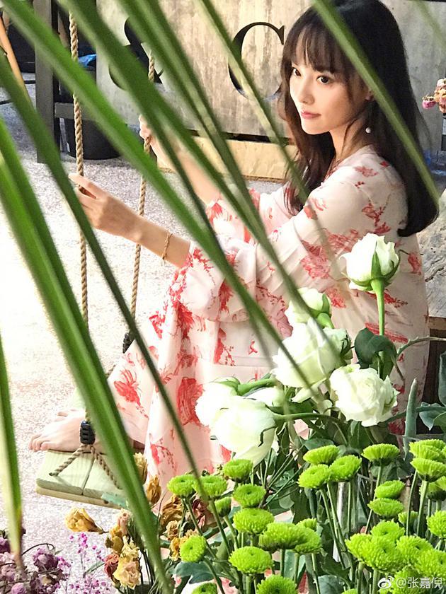 人比花娇!张嘉倪淡粉色长裙簇拥花丛性感迷人