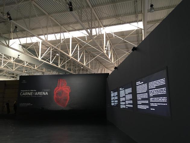 戛纳入围VR片《肉与沙》独家体验