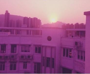 晒粉色大楼吐露心声
